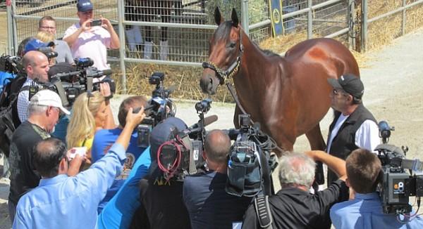 Calmado como siempre, el campeón es recibido por los medios en Del Mar (sandiegoreader.com)