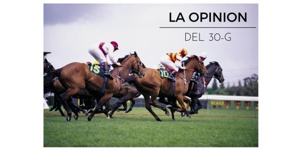 opina30-g